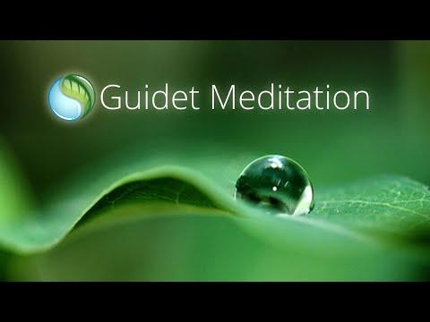 Mindfulness Meditation - GRATIS CD & Download