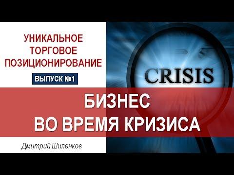 Бизнес во время кризиса - Дмитрий Шиленков