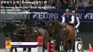 승마경기 소개 : Driving(마차) (FEI Dri…
