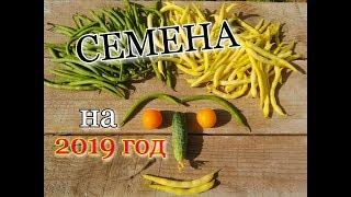 СЕМЕНА 2019 : ГоРоШЕК/ АРБУЗЫ/ КАБАЧКи/ КАПуСТА/ Московская обл./#seed##