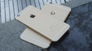 iPhone 6 x iPhone 6 Plus = Drop Test
