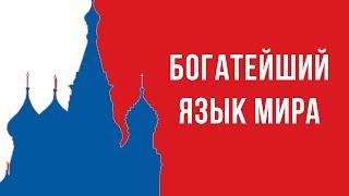 Вебинар: Русский язык - один из богатейших языков мира