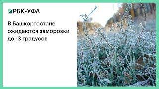 В Башкортостане ожидаются заморозки до -3 градусов