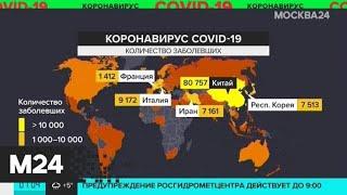 В Москве действуют меры профилактики распространения коронавируса - Москва 24