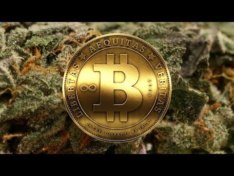 Let's Talk About Bitcoin And Cannabis! AMA Live with PFT