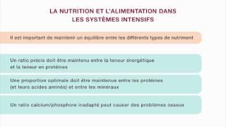 Nutrition et alimentation en aviculture familiale – Le système intensif à petite échelle