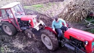 IMT 558 izvlacenje stajnjaka kroz veliko blato - IMT 558 pulling manure from big mud