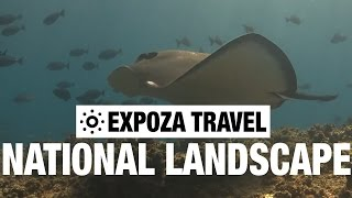 The National Landscape (Australia) Vacation Travel Wild Video Guide