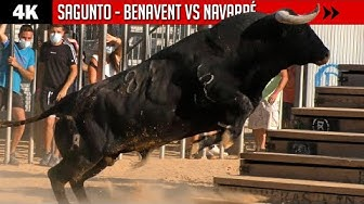 Image del Video: TOROS: Desafío Benavent
