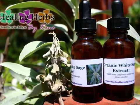 Organic white sage extract