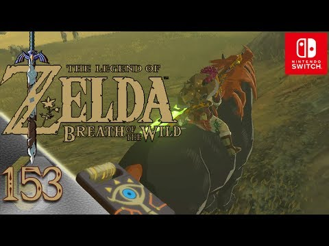 Kletterausrüstung Zelda Breath Of The Wild : Zelda: breath of the wild ☆ 153 ein großes pferd switch