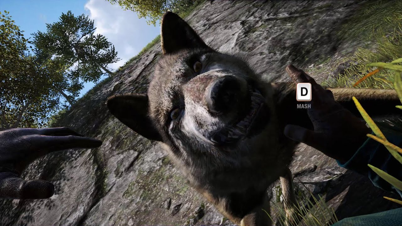 how to get flies far cry 5