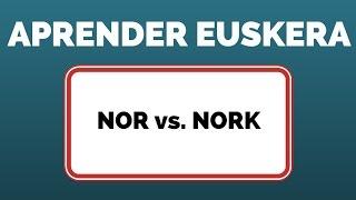 Aprender euskera NOR vs. NORK