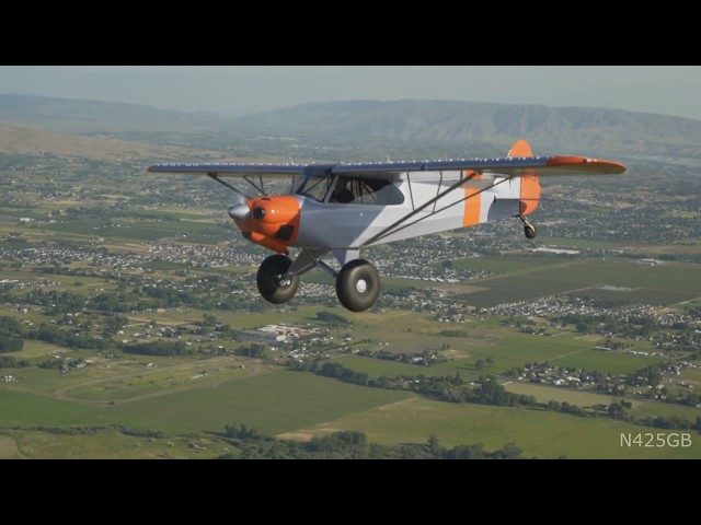 2009 Carbon Cub EX For Sale - YouTube