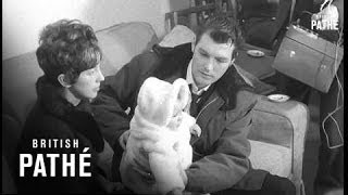 Trawler Man Returns Home Aka  Lone Survivor Of Trawler Disaster Is Home (1968)