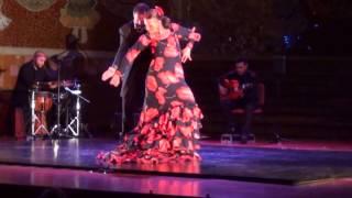 Art Flamenc al Palau de la Música Catalana