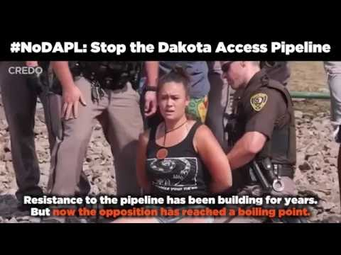 The Fight to Stop the Dakota Access Pipeline #NoDAPL