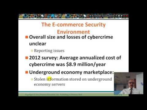 E commerce Security Environment