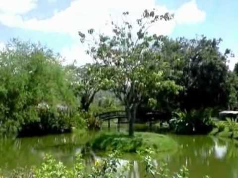 Jardin hermoso en casa campestre en el valle del cauca en - Jardin en casa ...