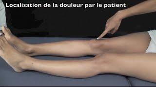 Syndrome douloureux rotulien et muscles stabilisateurs - Journée du Genou 2013 Fr