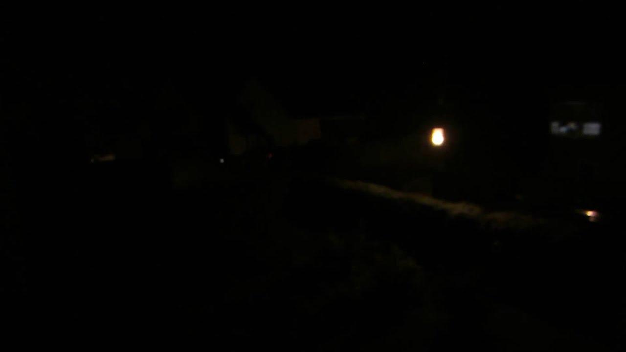 Tiergeräusche Nachts