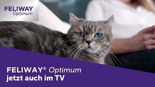 FELIWAY Optimum im TV ►Katzen Werbung aus Sicht einer Katze