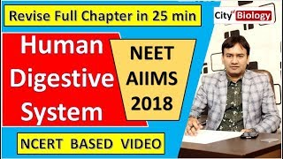 Digestive System Revision ( CRASH COURSE ) For NEET / AIIMS - 2018 ; NCERT BASED