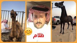 شوفو تبارك الله خيل الامير ناصر بن نواف الجديده