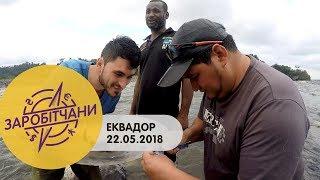 Заробітчани - Эквадор - Выпуск 13 - 22.05.2018