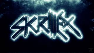 Skrillex - All is fair in love and brostep BASS BOOST