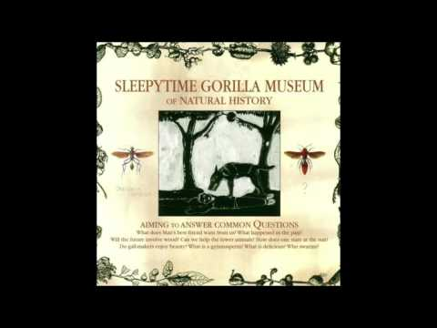 Sleepytime Gorilla Museum - of Natural History (2004)