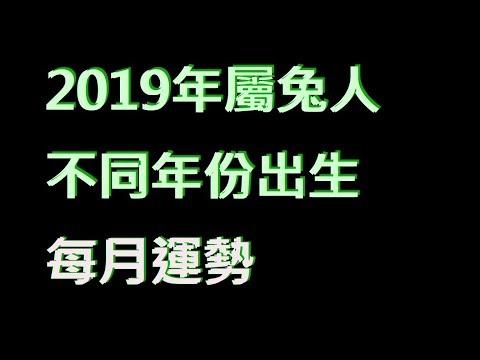 ☯️2019年屬兔人不同年份出生的🐰全年運勢大全[2019年🐰每月運勢][純文字]