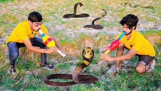 Searching For Snakes Challenge | पहले तो कुछ नहीं मिला, लेकिन फिर.....
