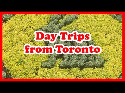 5 Top-Rated Day Trips From Toronto, Ontario | Canada Day Trips