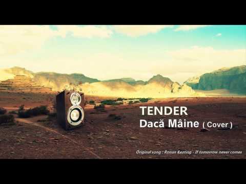Tender - Daca maine ( cover )