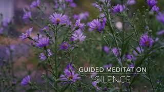 SILENCE: 5 Minute Guided Meditation | A.G.A.P.E. Wellness