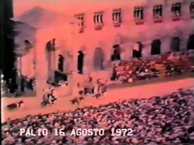 Palio 16 agosto 1972