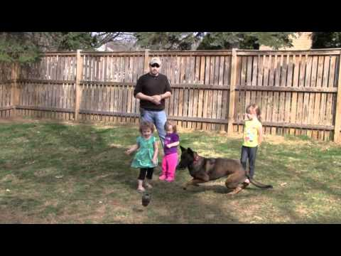 Equip 2 K9, Working Dogs and Children