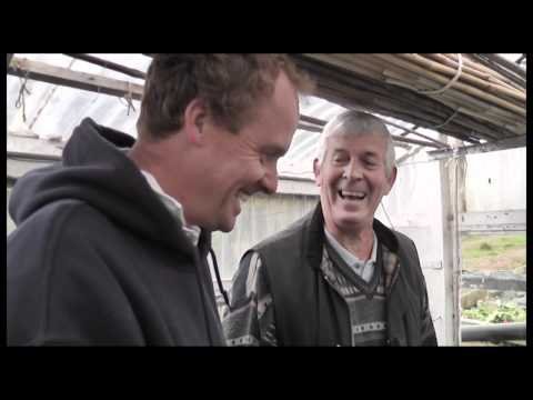 Tales from Terry's Allotment - OCTOBER 2011