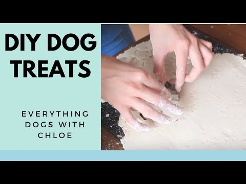 HOW TO MAKE DOG TREATS WITHOUT PEANUT BUTTER - GLUTEN FREE