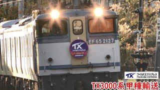 つくばエクスプレス3000系甲種輸送列車 TsukubaExpress  new train 3000 series transport