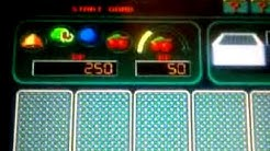 Fruit Poker 500as tét
