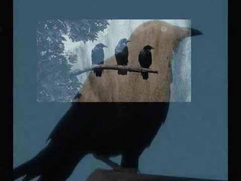 the three ravens translation
