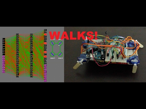 Robot Learning To Walk With Neural Networks