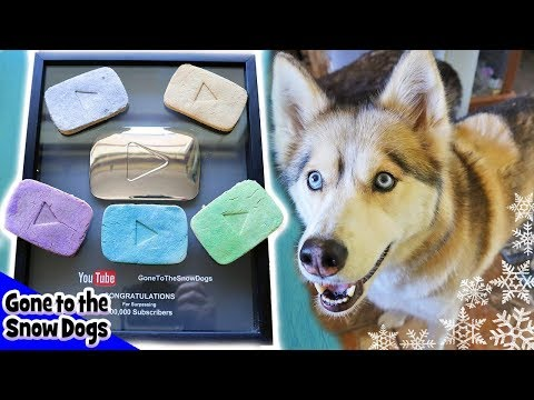 YouTube Play Button Cookies for Dogs   DIY Dog Treats Recipe 100