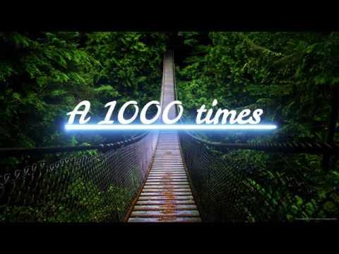 Hamilton Leithauser & Rostam - à 1000 Times (lyrics)