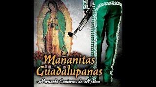 Mariachi Cantares De Mexico - Buenos Dias Paloma Blanca