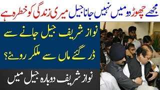 Nawaz Sharif Back to Adiyala Jail | Spotlight