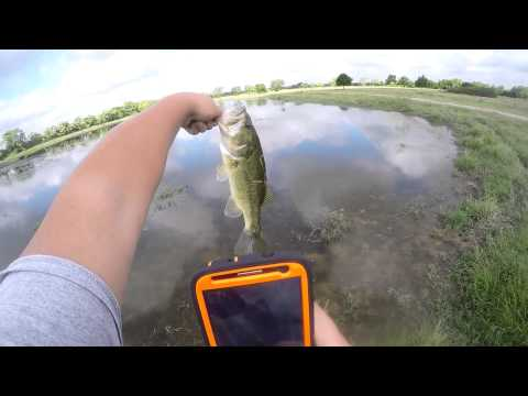 Tomball ,Texas Bass Fishing