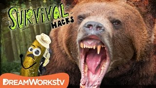 How to Survive a BEAR Attack | SURVIVAL HACKS